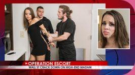 OperationEscort Liza Rowe Wall St Crack Down On High-End Madam